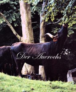 """Buchcover """"Der Auerochs"""""""