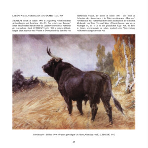 Bildnis eines gewaltigen Ur-Stieres