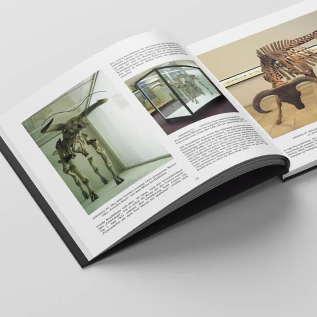 "Blick ins Buch ""Der Auerochs"""